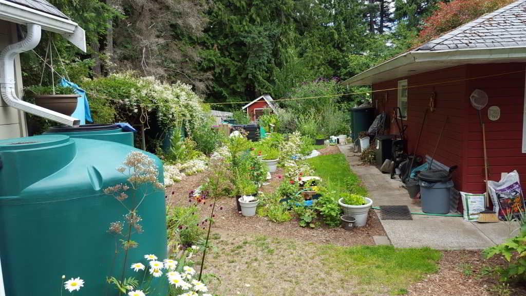 rainwater system setup besides house